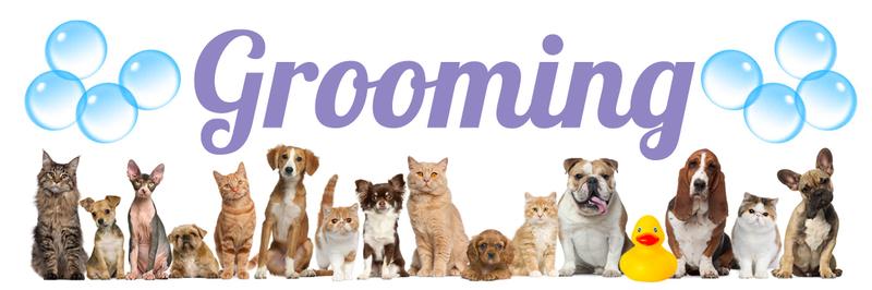 grooming header