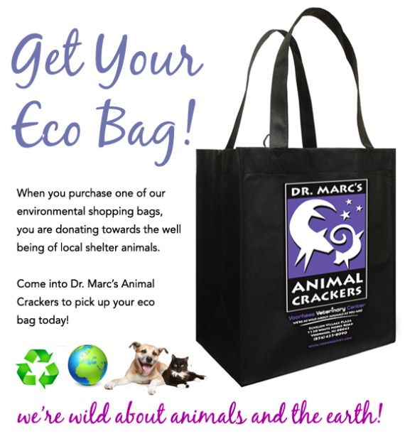 eco bag image